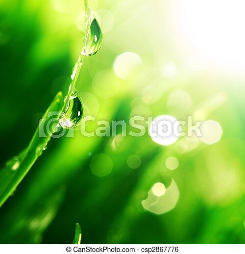 éclat, baisse eau - csp2867776