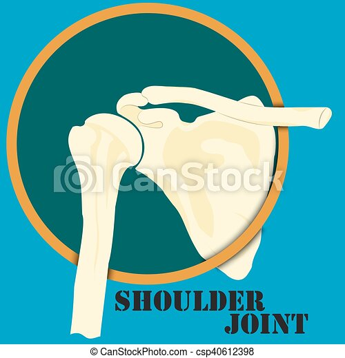 épaule, jointure, humain - csp40612398