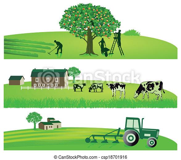 agriculture, jardin - csp18701916