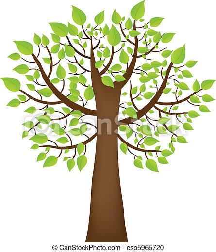 arbre - csp5965720