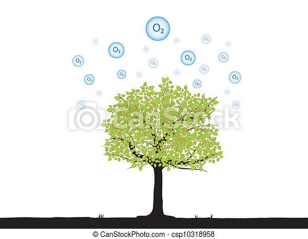arbre, oxygène - csp10318958