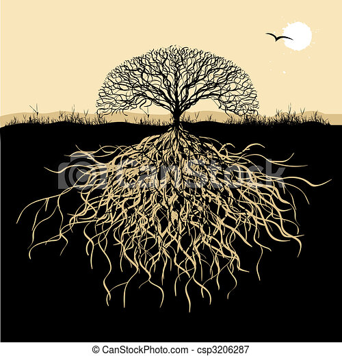 arbre, silhouette, racines - csp3206287