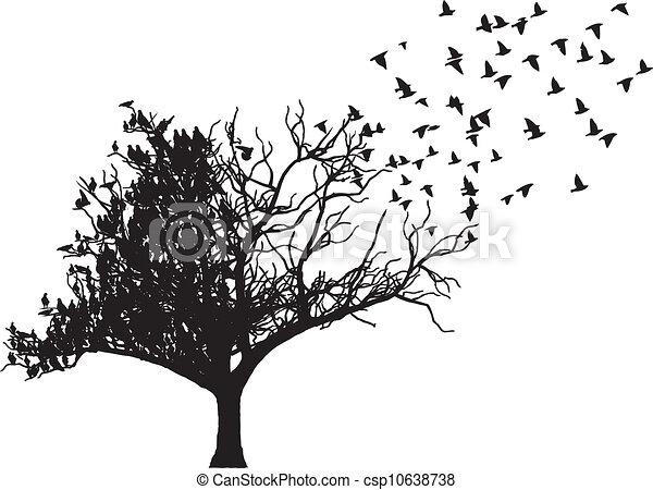 arbre, vecteur, art, oiseau - csp10638738