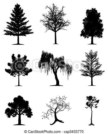 arbres, collection - csp3433770