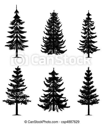 arbres, collection, pin - csp4887629