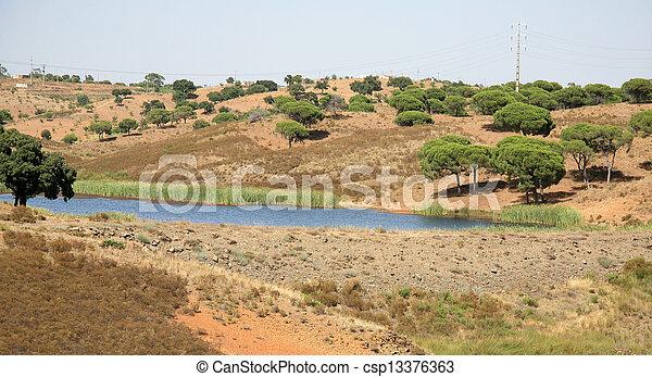 arbres, paysage, portugal, bouchon - csp13376363