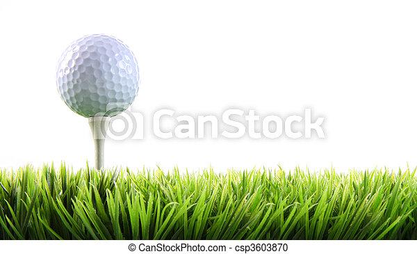 balle golf, herbe, tee - csp3603870