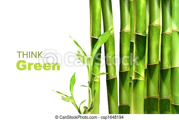 bambou, empilé, pousses, côté - csp1648194