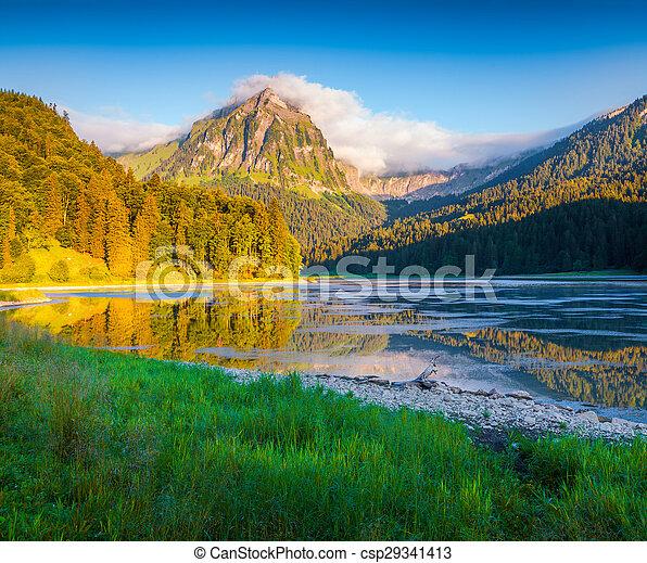 beau, été, obersee, coloré, lac, matin, suisse, incredibly - csp29341413