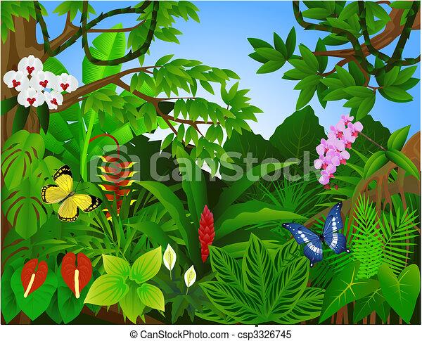beau, forêt tropicale - csp3326745