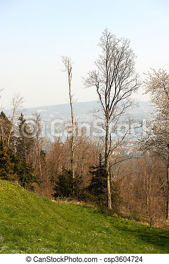 beau, suisse, coteau - csp3604724