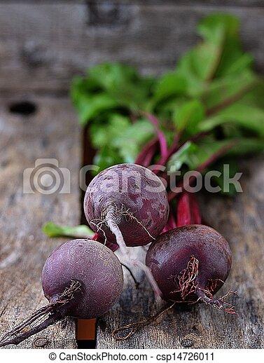betterave, organique, frais, racine - csp14726011