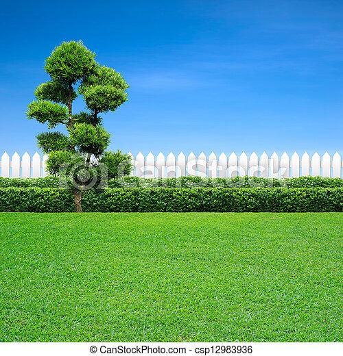 blanc, arbre, barrière - csp12983936