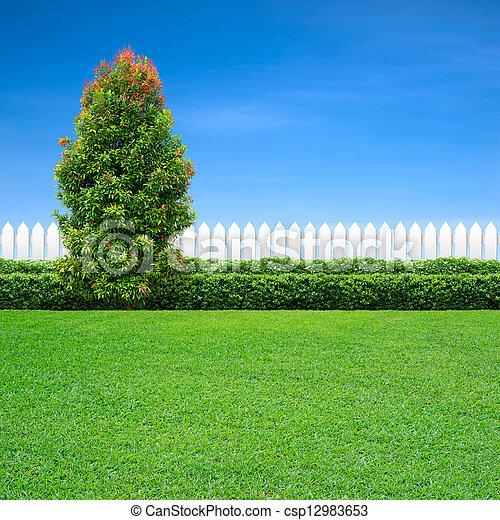 blanc vert, arbre, barrière - csp12983653