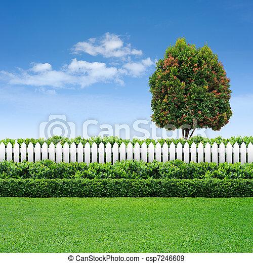 bleu, barrière, ciel, arbre, blanc, haie - csp7246609
