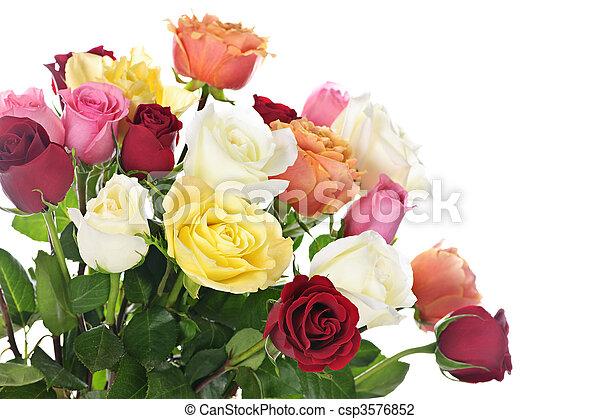 bouquet, roses - csp3576852