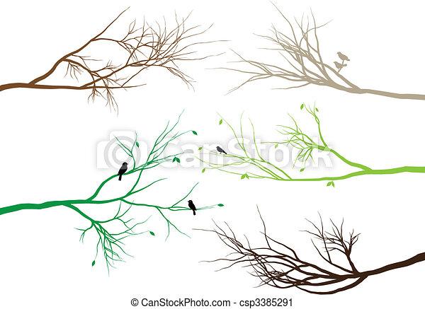 branches, arbre - csp3385291