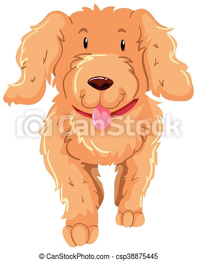 brun, pelucheux, fourrure, chien - csp38875445