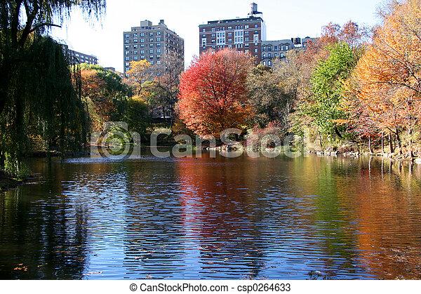 central, nouveau, parc, york, automne - csp0264633