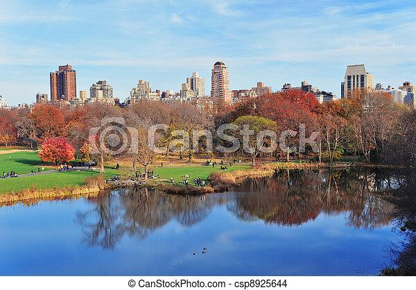 central, nouveau, ville parc, york, automne - csp8925644