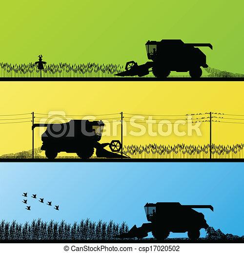 champs, récolte, vecteur, grain, combiner, récolte - csp17020502
