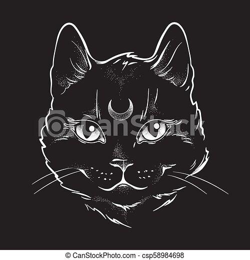 chat, sien, noir, lune, forehead. - csp58984698