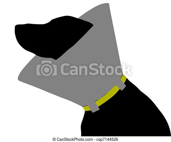 chien, ruff - csp7144526