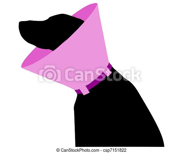 chien, ruff - csp7151822