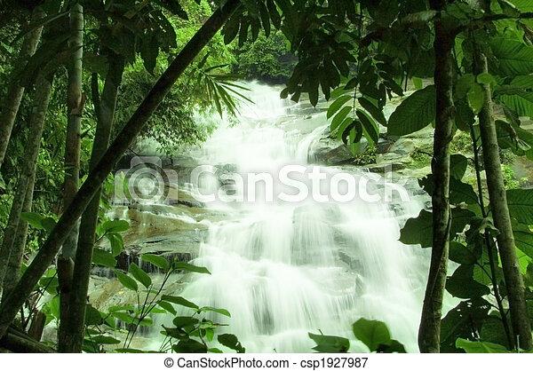 chutes d'eau, forêt, vert - csp1927987