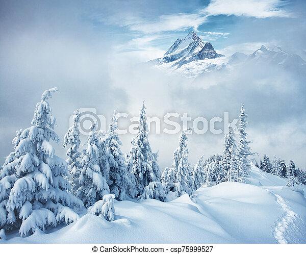 collage., alpes, emplacement, europe., créatif, suisse, suisse - csp75999527