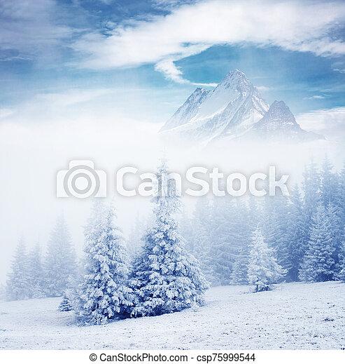 collage., alpes, emplacement, europe., créatif, suisse, suisse - csp75999544