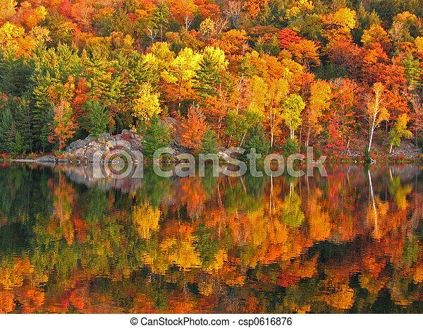 coloré, automne - csp0616876