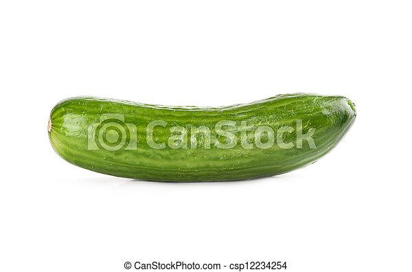 concombre - csp12234254