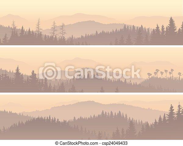 conifère, fog., bois, matin - csp24049433
