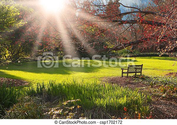 coucher soleil, garez banc - csp1702172
