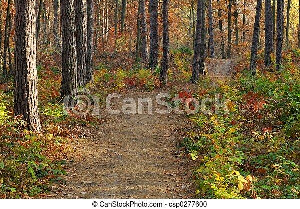 couleurs, automne - csp0277600