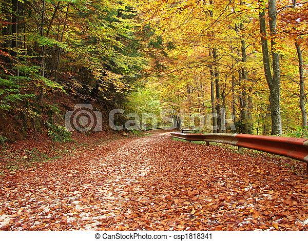 couleurs, automne - csp1818341