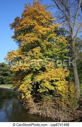 couleurs, automne - csp6741498