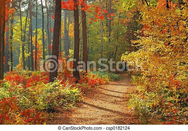 couleurs, automne - csp0182124