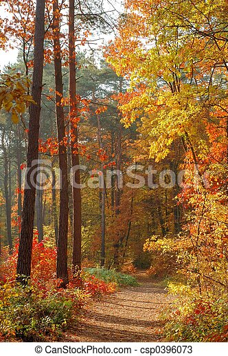couleurs, automne - csp0396073