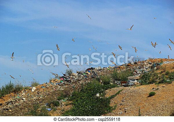 décharge ordures, 07 - csp2559118