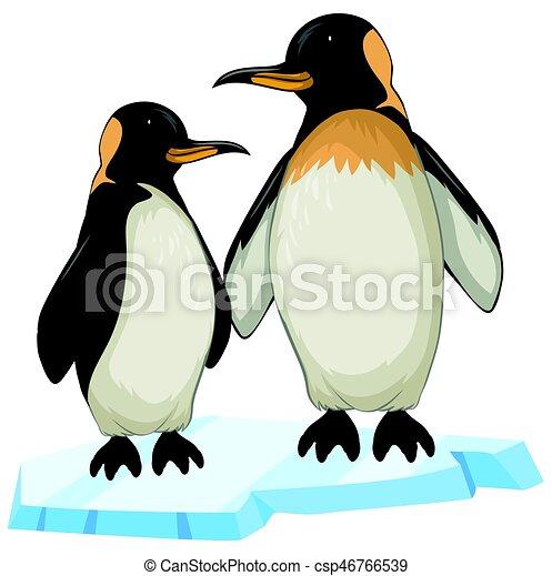 deux, glace, manchots - csp46766539
