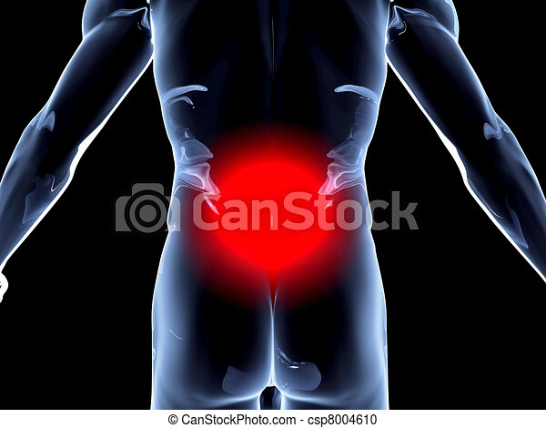 dos, anatomie, douleur, - - csp8004610
