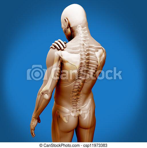 douleur, numérique, épaule, transparent, corps - csp11973383