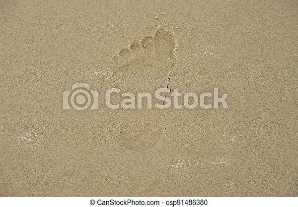 empreinte, sand. - csp91486380