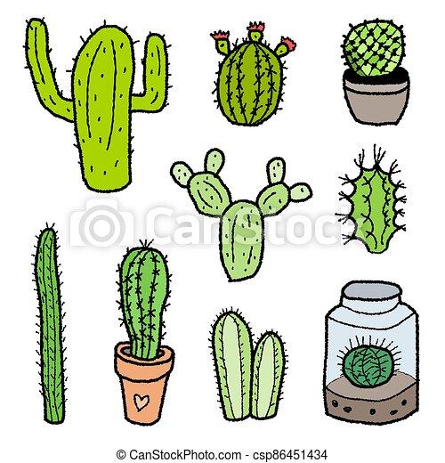 ensemble, cactus - csp86451434
