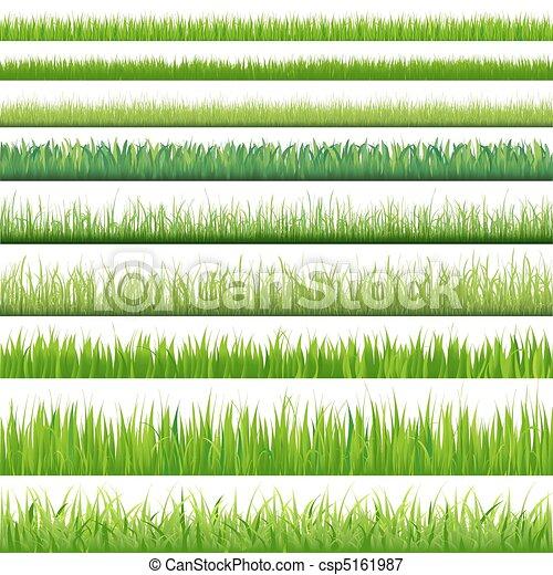 ensemble, grand, herbes - csp5161987