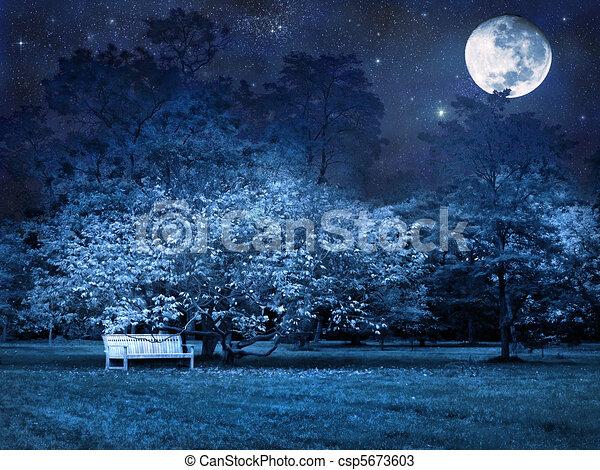 entiers, parc, lune, nuit - csp5673603