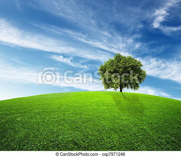environnement, vert - csp7971246