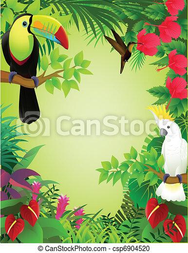 exotique, jungle, oiseau - csp6904520